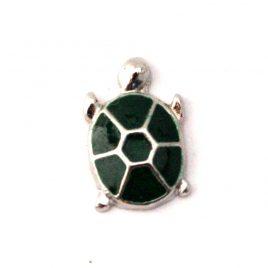 Turtle (Green)