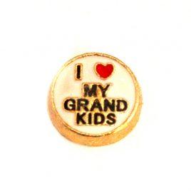 I Love My Grand Kids