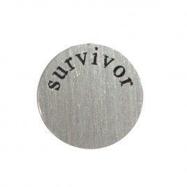Survivor Disk
